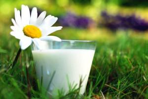 молоко в косметологии