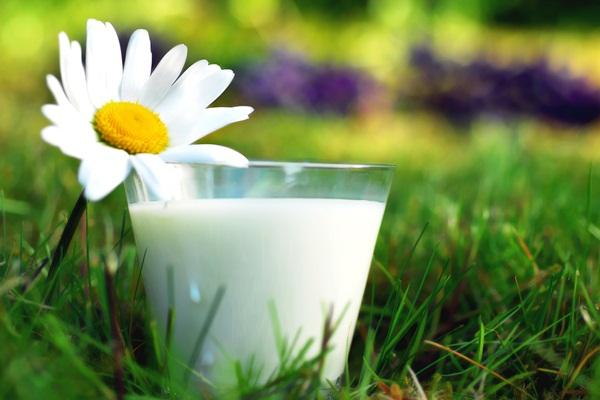 В России сократилось производство молока
